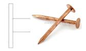 Large flat head copper nail