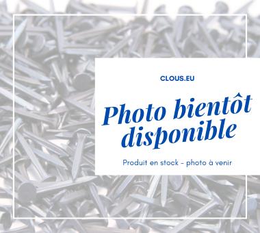 Bêcheron Inox Ø 2.4 mm