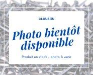 Pointe Acier tête homme - fil cranté Ø 1.1 mm